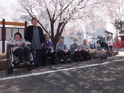 花見3月30日1.jpg